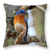 Bluebird Dad Throw Pillow
