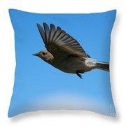 Bluebird Glide Throw Pillow