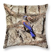 Bluebird On Canary Island Palm II Throw Pillow