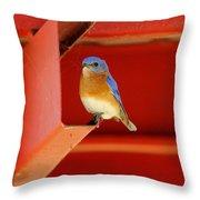 Bluebird On Red Throw Pillow