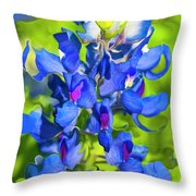 Bluebonnet Fantasy Throw Pillow