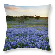 Bluebonnet Sunrise And A Windmill In Texas 1 Throw Pillow