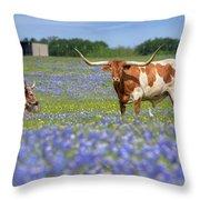Bluebonnets And Longhorns 4 Throw Pillow