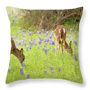 Bluebonnets And Whitetails Throw Pillow