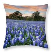 Bluebonnets On A Spring Evening 403-1 Throw Pillow