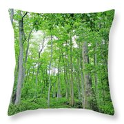 Blueboonet Swamp Baton Rouge La Throw Pillow