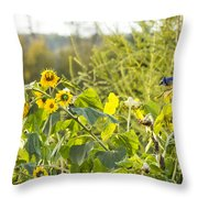 Bluejay And Sunflowers Throw Pillow