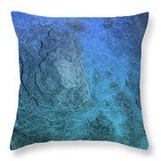 Bluepanel 16 Throw Pillow