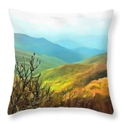 Blueridge - Spring Throw Pillow