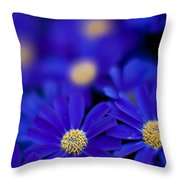 Bluey Gerbera Throw Pillow