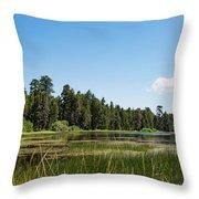 Bluff Lake Ca 3 Throw Pillow