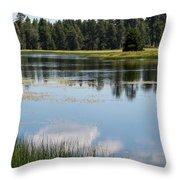 Bluff Lake Ca 4 Throw Pillow
