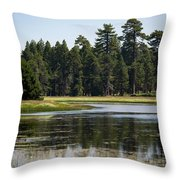 Bluff Lake Ca 6 Throw Pillow