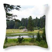 Bluff Lake Ca 9 Throw Pillow
