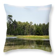Bluff Lake Ca Island 4 Throw Pillow