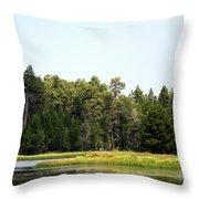 Bluff Lake Ca Island 5 Throw Pillow