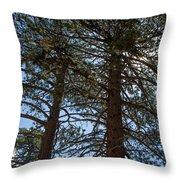 Bluff Lake Ca Through The Trees 3 Throw Pillow