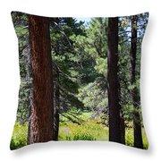 Bluff Lake Ca Through The Trees 7 Throw Pillow
