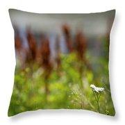 Bluff Lake Ca Wild Flowers 1 Throw Pillow