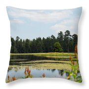 Bluff Lake Ca Wild Flowers 11 Throw Pillow