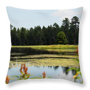 Bluff Lake Ca Wild Flowers 12 Throw Pillow