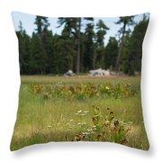 Bluff Lake Ca Wild Flowers 4 Throw Pillow