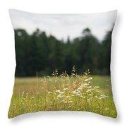 Bluff Lake Ca Wild Flowers 5 Throw Pillow