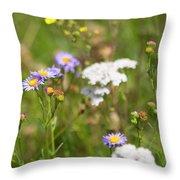 Bluff Lake Ca Wild Flowers 6 Throw Pillow
