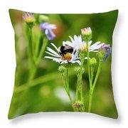 Bluff Lake Ca Wild Flowers 8 Throw Pillow