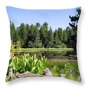 Bluff Lake Foliage 5 Throw Pillow