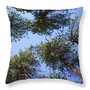 Bluff Lake Forest 2 Throw Pillow