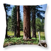Bluff Lake Forest 3 Throw Pillow