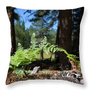 Bluff Lake Forest Foliage1 Throw Pillow