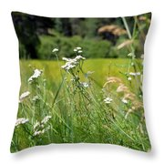 Bluff Lake Wild Flowers 1 Throw Pillow