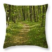 Bluff Trail Awenda Provincial Park Throw Pillow