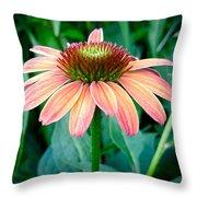 Blush Coneflower Throw Pillow