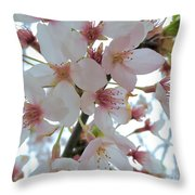 Blushed 1 Throw Pillow