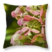 Blushing Hydrangea Throw Pillow