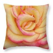 Blushing Yellow Rose Throw Pillow
