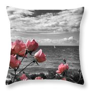 Blustery Summer's Day  Throw Pillow