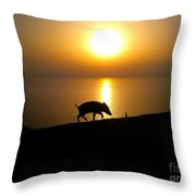 Boar To Sea Throw Pillow