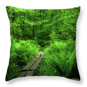 Boardwalk On The Ma At 2 Throw Pillow