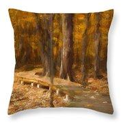 Boardwalk Through The Woods Throw Pillow