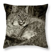 Bobcat In Black And White Throw Pillow