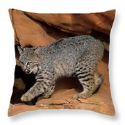 Bobcat Makes Its Move Throw Pillow
