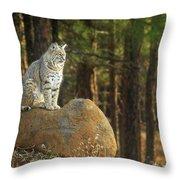 Bobcat Thoughts Throw Pillow