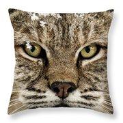 Bobcat Whiskers Throw Pillow