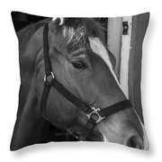 Bode 15061b Throw Pillow