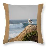 California Gull 2 - Bodega Head Sentinel  Throw Pillow