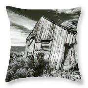 Bodie Barn Throw Pillow